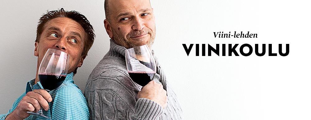 Viinikoulu_2015_vinjetti_etusivu_1000x388