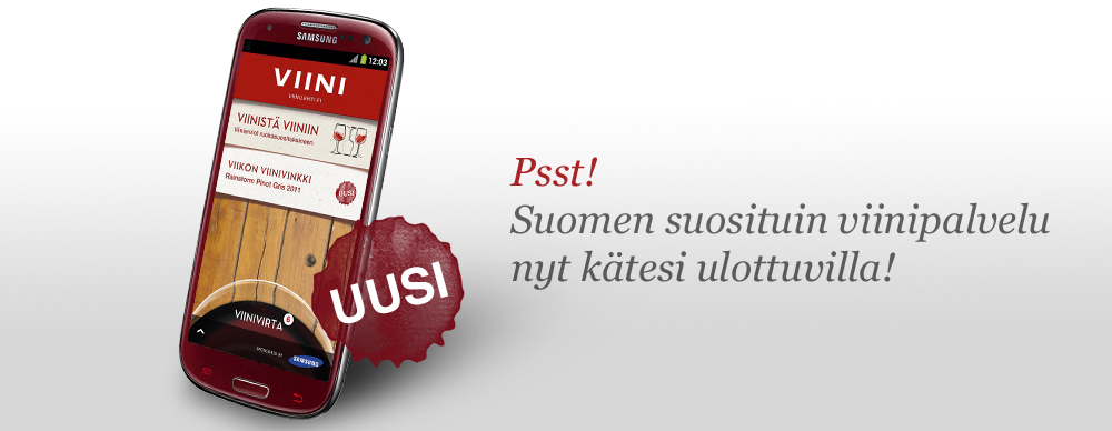 2012-vv-applikaatio-vinjetti-iteraatio3