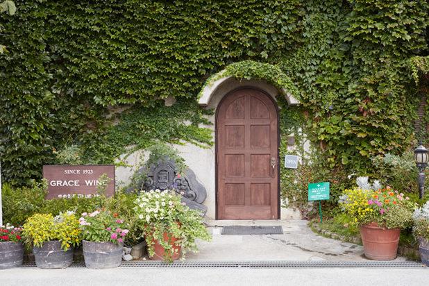 Japani matkalla viinimaaksi Grace Wine Winery