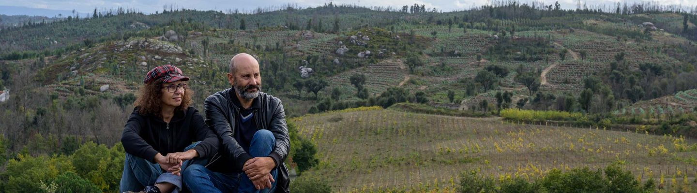 Maastopalo viinitarha